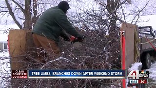 KC tree services staying busy after snowstorm mess