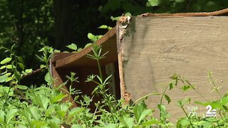 Neighbors concerned about illegal dumping in the Rosemont neighborhood