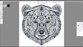 Grizzly Bear Face Line Art Time-Lapse Drawing