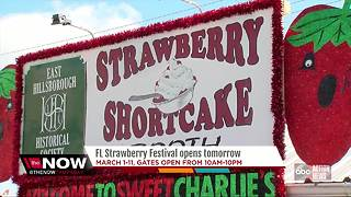 Florida Strawberry Festival 2018: Everything you need to know - Video