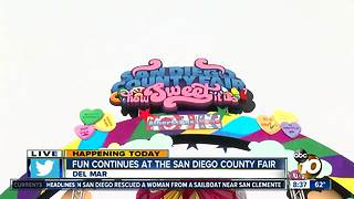 First weekend of the San Diego County Fair - Video