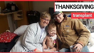 Mother saves her sick toddler's life by donating her kidney