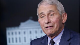 Fauci Says Pandemic Won't Get Better For Christmas And New Years