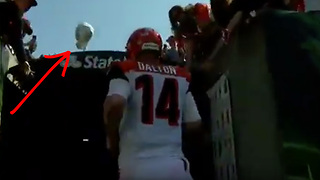 Pissed Off Bengals Fan Throws His Hat at Andy Dalton - Video