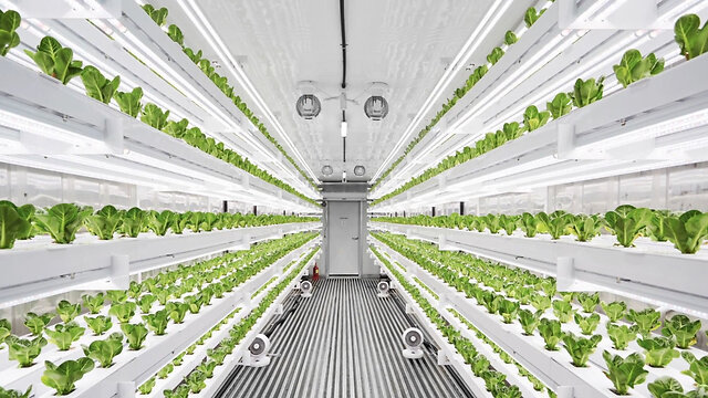 Smart vertical farming system allows users to maintain crops from anywhere
