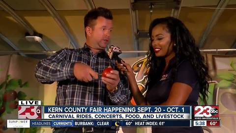 Kern County Fair opens today, and remains open for the next 11 days