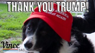 THANK YOU TRUMP - Emotional Farewell Tribute