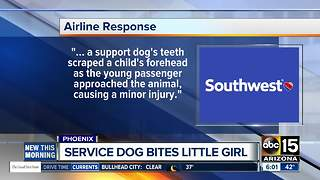 Young girl injured by service dog on Southwest Airlines flight from Phoenix