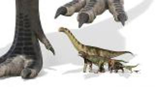 New Predator Dinosaur - Video