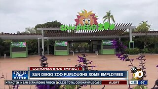 San Diego Zoo furloughs some employees