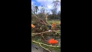 Livingston, Louisiana, Gets Brunt of Tornado Damage - Video
