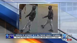 Person of interest in deadly south baltimore stabbing - Video