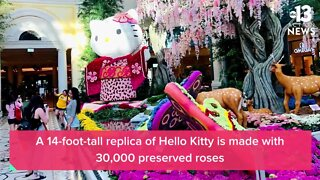Hello Kitty at Bellagio Conservatory