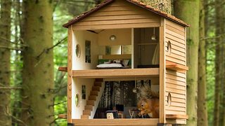 Red squirrel lodge luxury feeder - Video