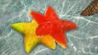Melting Starfish - Video