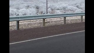 'Hoarfrost' Spotted in Alpine, Texas, Amid Winter Storm
