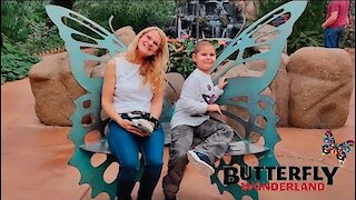 Butterfly Wonderland: A Rainforest Exhibit 🦋Scottsdale Arizona