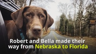 Dog With Cancer Goes On Farewell Trip - Video