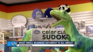 Wauwatosa toy store urges shoppers to think small - Video
