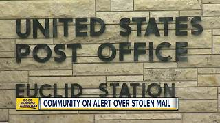 Reports of mail theft on the rise in Tampa Bay area - Video