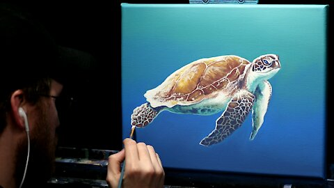Acrylic Wildlife Painting of a Sea Turtle - Time Lapse - Artist Timothy Stanford
