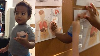 Clever Toddler Knows Human Anatomy At Just Two-Years-Old  - Video