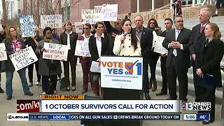 1 October survivors call for gun background check enforcement - Video