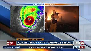 Climate change already costing US billions in losses - Video