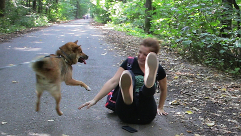 Dog overexcited to see his owner, pushes him down on the ground