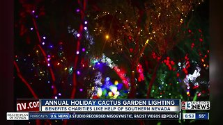 Annual Holiday Cactus Garden Lighting