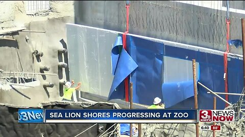 Sea Lion Shores progressing at zoo