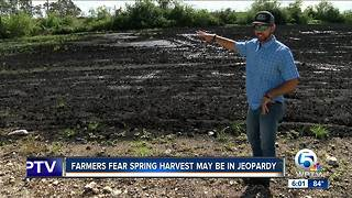 More farmers fear spring harvest may be in jeopardy.