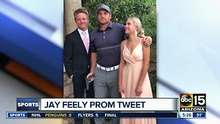 Former Cardinals kicker Jay Feely apologizes for gun photo - ABC15 Sports - Video