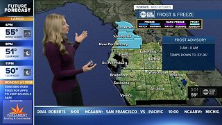 Frost Advisory in effect for some Tampa Bay area counties