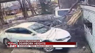 Wind damage across metro Detroit