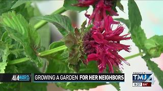 414ward: Growing a garden for her neighbors - Video