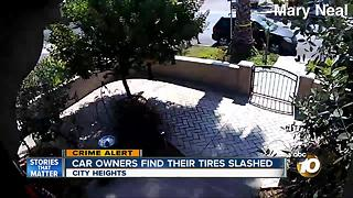 Car owners find their tires slashed - Video
