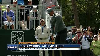 Tiger Woods' Valspar Championship debut