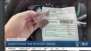 Florida Department of Agriculture warns Floridians of suspicious seed packets mailed from China