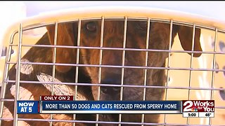 Dozens of dogs rescued from home in Spavinaw