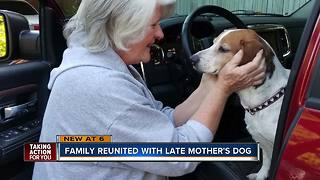 Dog defies all odds, returns home to Winter Haven family after eight years - Video