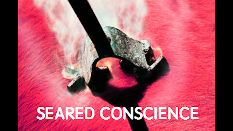 What is a Seared Conscience?
