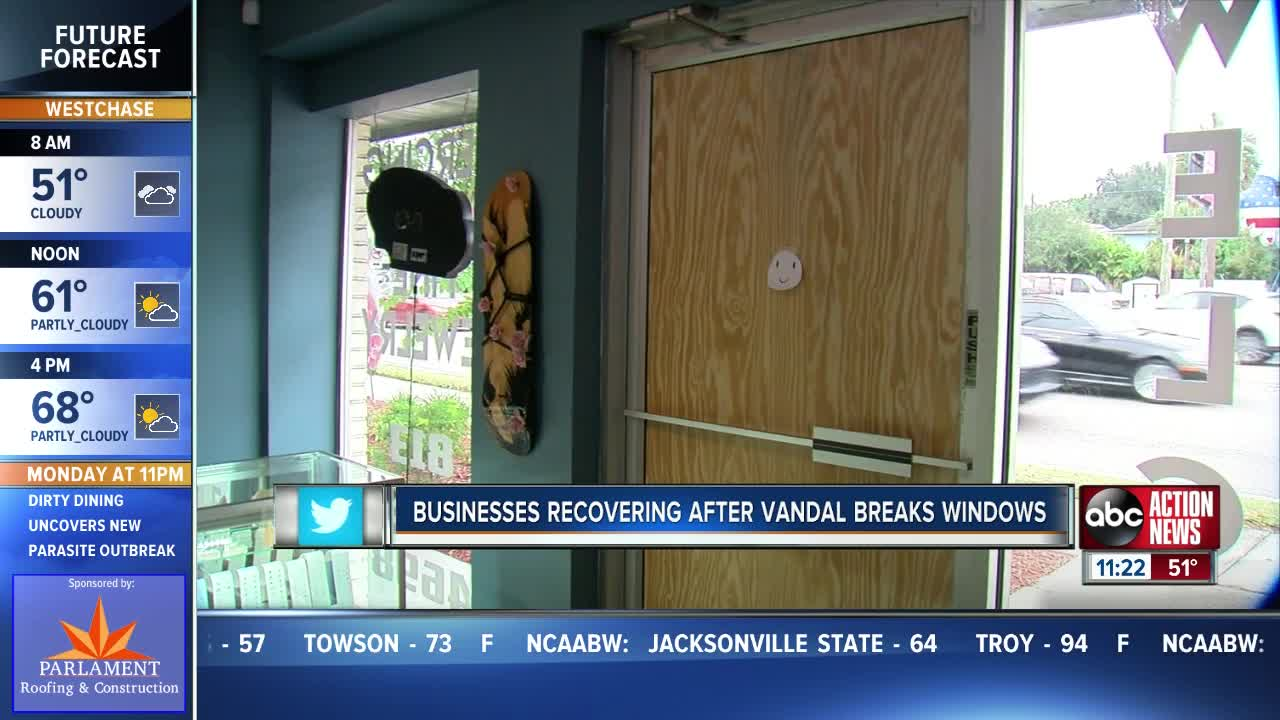Businesses vandalized in South Tampa