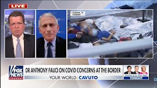 Fauci Is Silent On COVID Cases At Border