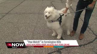Dog watchers keep an eye out for crime in Farmington Hills - Video