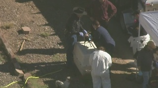 Air15 over animal abuse investigation in Mesa - Video