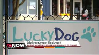 Grieving pet owner filing lawsuit - Video