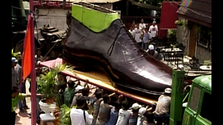 World's Biggest Shoes - Video