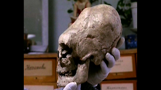 Strange Elongated Skulls Discovered - Video