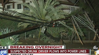 Suspected drunk driver plows into power lines